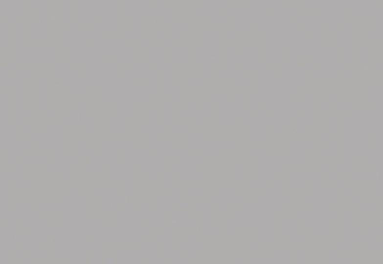 Акриловые столешницы Corian - silver gray 1 группа