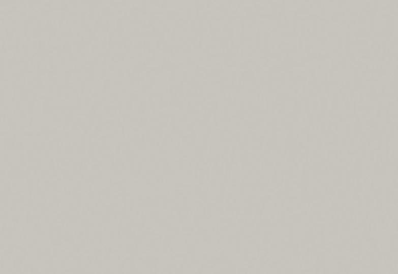 Акриловые столешницы Corian - pearl gray 1 группа